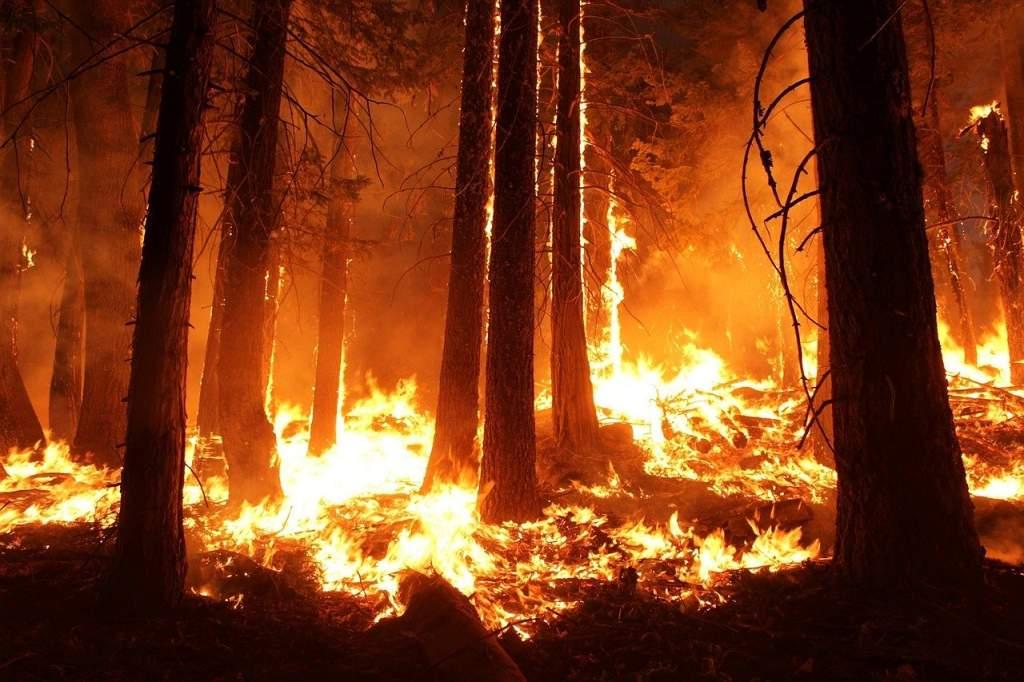 Matkailun ympäristövaikutukset eivät välttämättä näy selvästi, kuten hallitsemattomana roihuava metsäpalo.