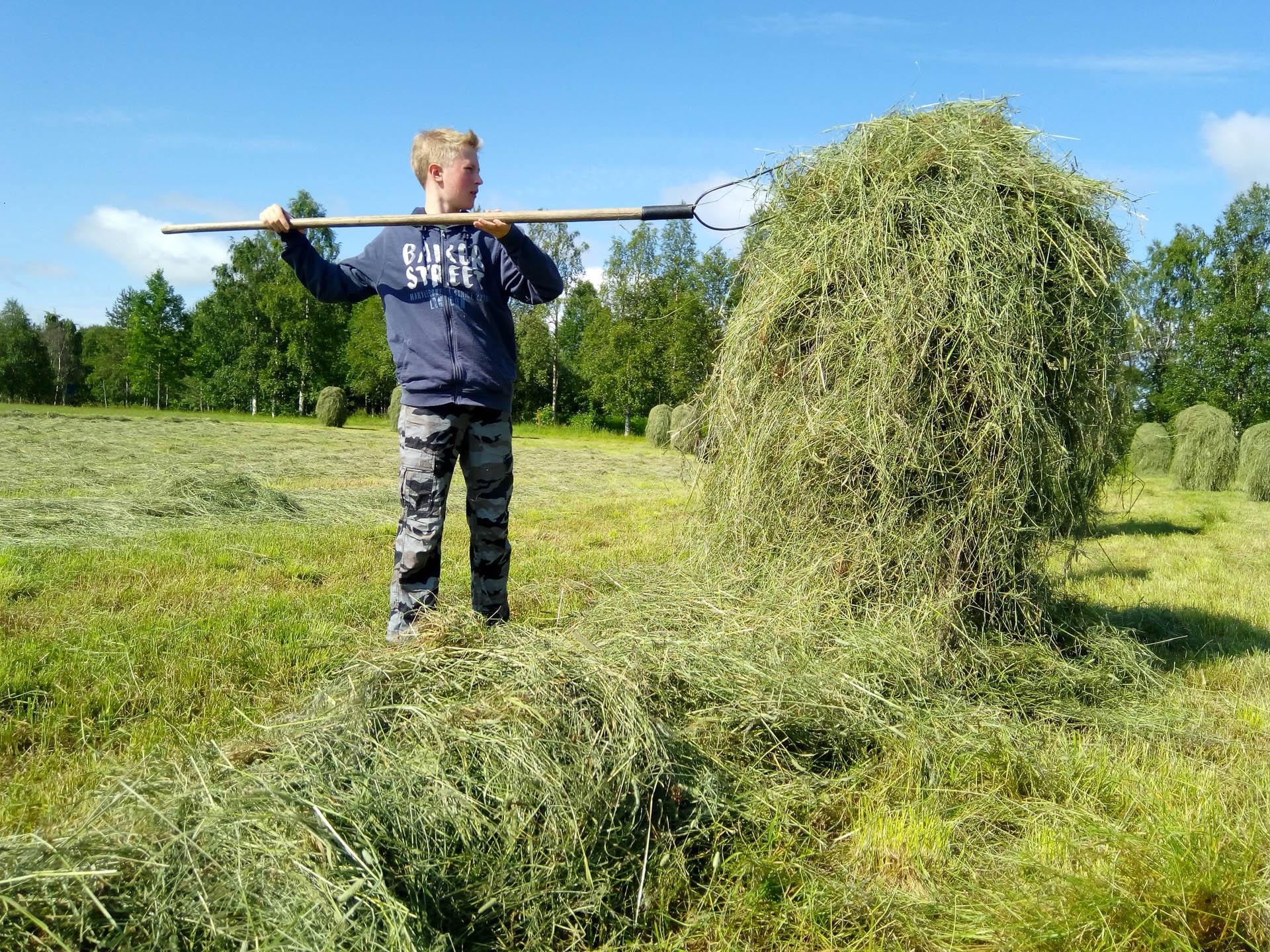 Heinätöihin pääsy voi olla vaikuttava elämys myös suomalaiselle nuorelle